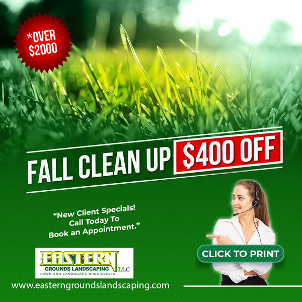 fall cleanup special